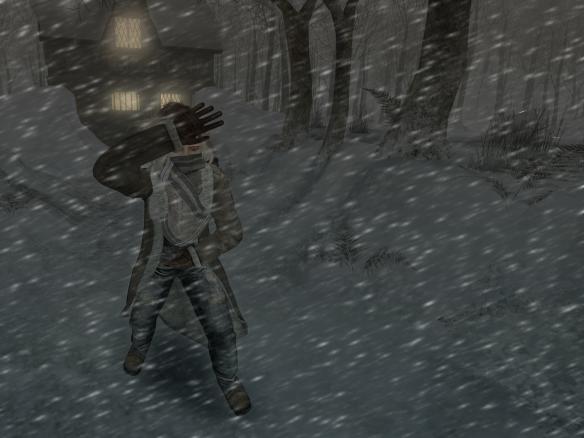 marten - snow-blind